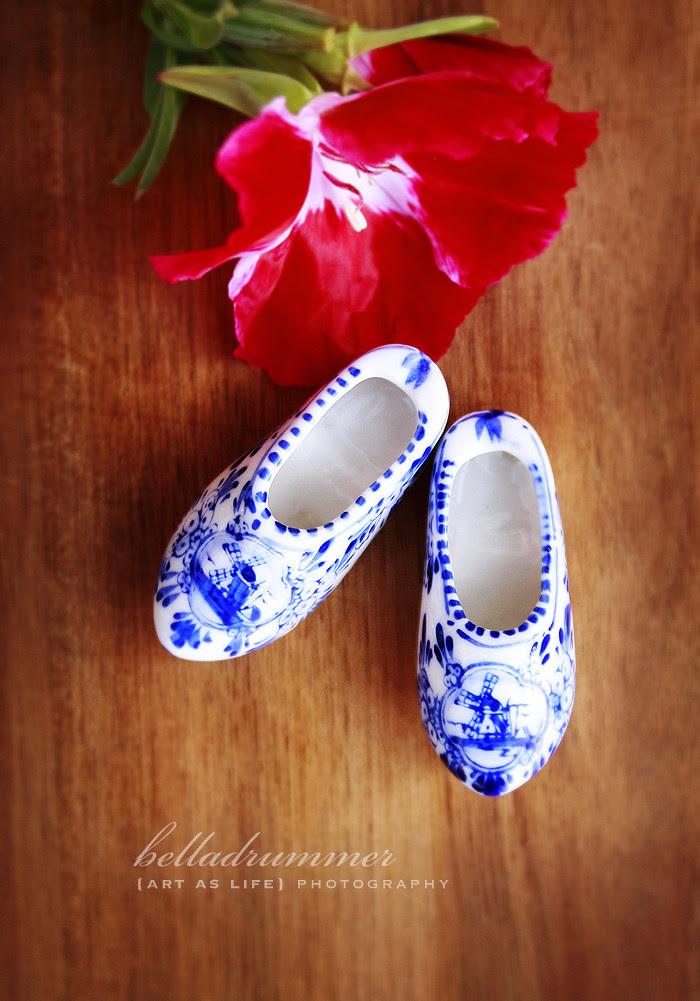 Sweet little Blue Shoes