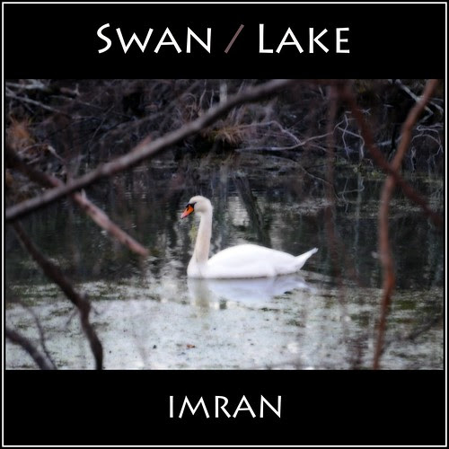 Swan / Lake - IMRAN™ by ImranAnwar