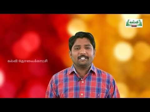 4th Social Science ஆற்றங்கரை அரசுகள் அலகு 1 பகுதி 2 Kalvi TV