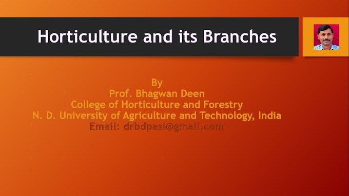 Definition of Horticulture and its Branches