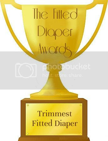 The Fitted Diaper Awards - The Trimmest Fitted Diaper