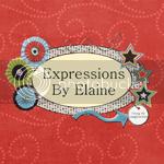 ExpressionsByElaine, blog