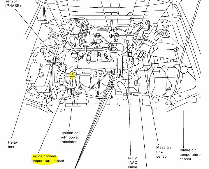 Diagram 2003 Nissan Xterra Starter Diagram Full Version Hd Quality Starter Diagram Diagramshilde Dolcialchimie It