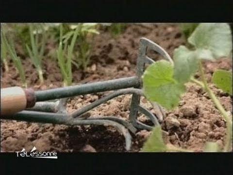 Breuillet nature l 39 association des jardiniers de france for Jardinier essonne