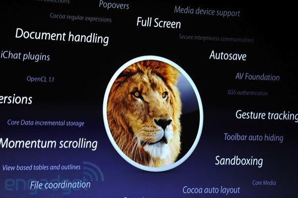 Lion3000APIs