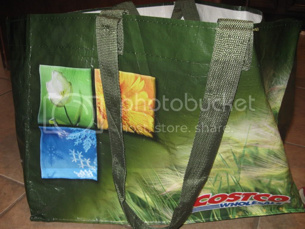 Costco shopping bag