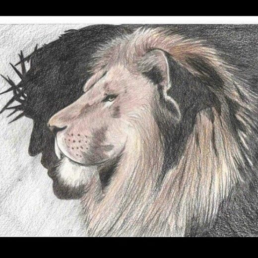 Lion Of Judah Drawing At Getdrawings Com Free For Personal Use
