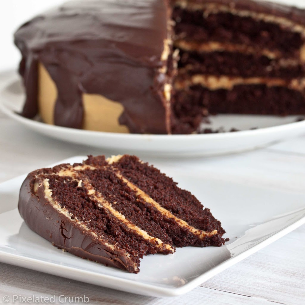 ultimate chocolate peanut butter cake 4 1024x1024 the ultimate chocolate peanut butter cake