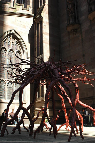 Trinity Root