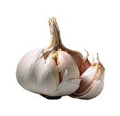 Garlic, prostate cancer and Death Receptor 4