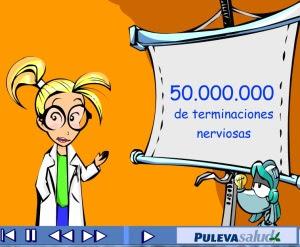 http://www.educantabria.es/docs/Digitales/Primaria/Cono_3_ciclo/CONTENIDOS/CUERPO%20HUMANO/DEFINITIVO%20NERVIOSO/Publicar/olfato%5B1%5D.swf