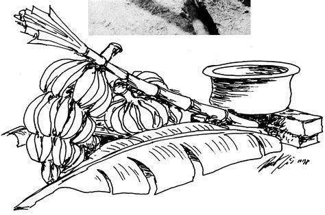 Free Banana Tree Drawing, Download Free Clip Art, Free