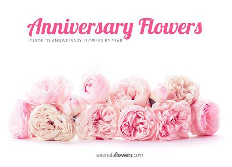 Happy Wedding Anniversary Flowers   www.imgkid.com   The
