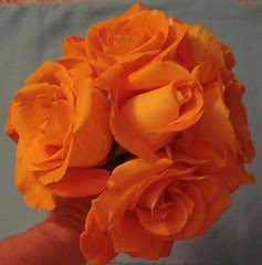 Orange roses!!