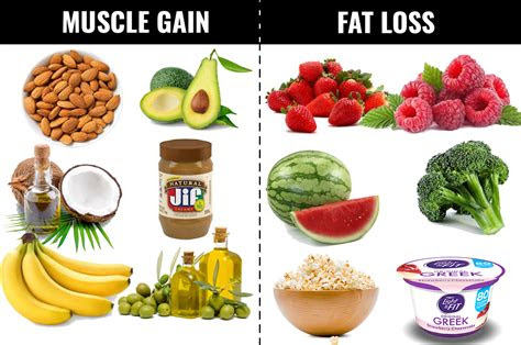 foods     lose fat  gain muscles