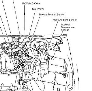 1996 Nissan Maxima Engine Diagram - Wiring Diagram Schemas