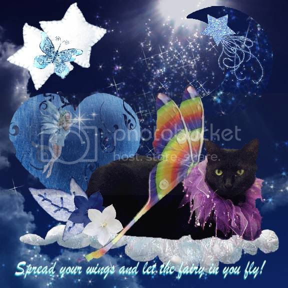 Fairies,Fantasy,House Panther,Miss Diamond,Domestic Cat,Night