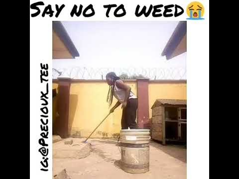 (comedy skit) First time weed smoker #Overhigh by Precioux_Tee