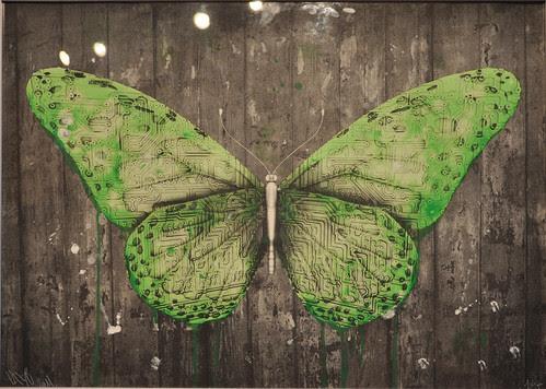 e-Lepidoptera