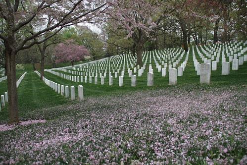 Washington DC Day 4 263