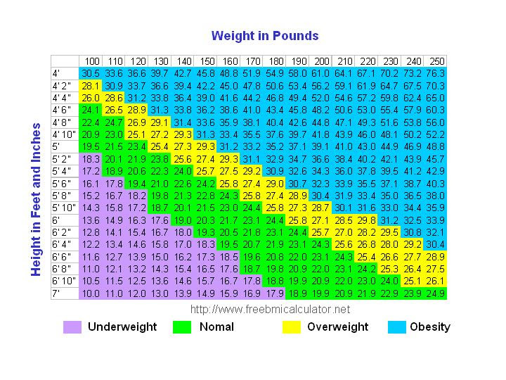 weight watchers scale body fat percentage