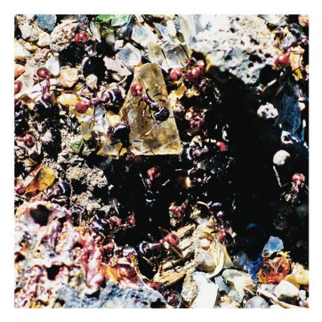 http://www.tinymixtapes.com/chocolate-grinder/premiere-mesa-ritual-procession-viii