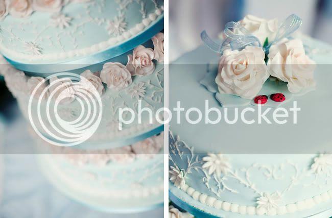 http://i892.photobucket.com/albums/ac125/lovemademedoit/GN_ladybugwedding_007-2.jpg?t=1296486564