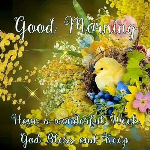 Good Morning Have A Wonderful Week Pictures Photos And Images For