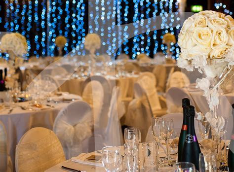 Light Curtain Décor Package   So Lets Party