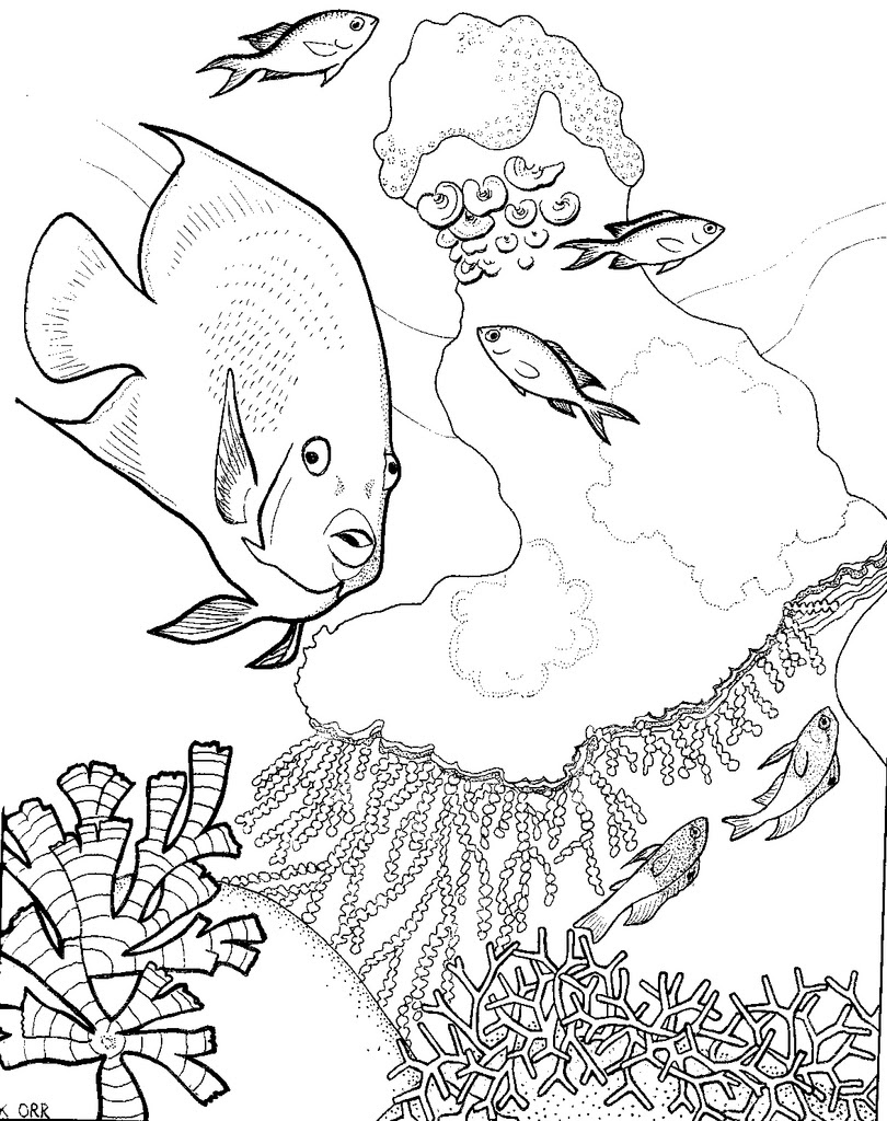Coral Reef Coloring Pages - Coloring Home