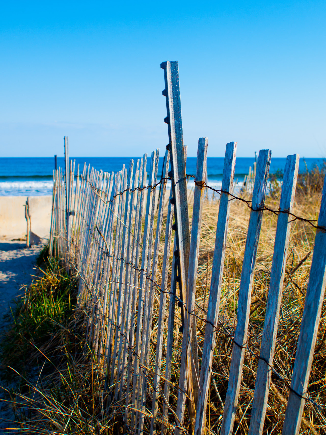 pipitographer: The fence at Higgins Beach, good spot for surfers in Maine.