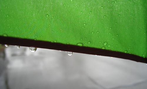 raindrops on the edge of my umbrella