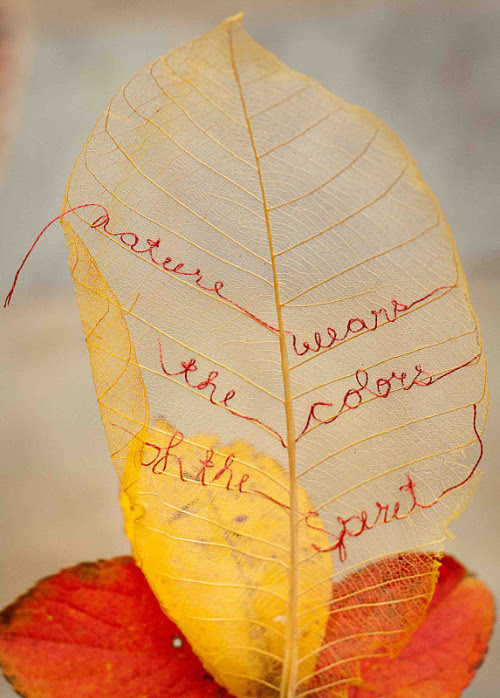 "truebluemeandyou:  DIY Embroidered Gold Leaf. Tutorial from The idea Room here to make ""leaf skeletons"", or you can buy them at your crafts store. Photo found at Susan Elliott's  Plays with Needles here."