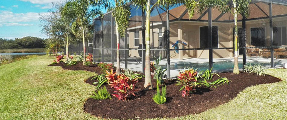 Lawn And Landscaping Services Palmetto Fl Area Three Seasons