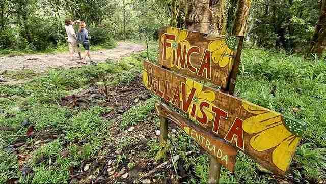 Finca Bellavista, ένα χωριό γεμάτο δεντρόσπιτα
