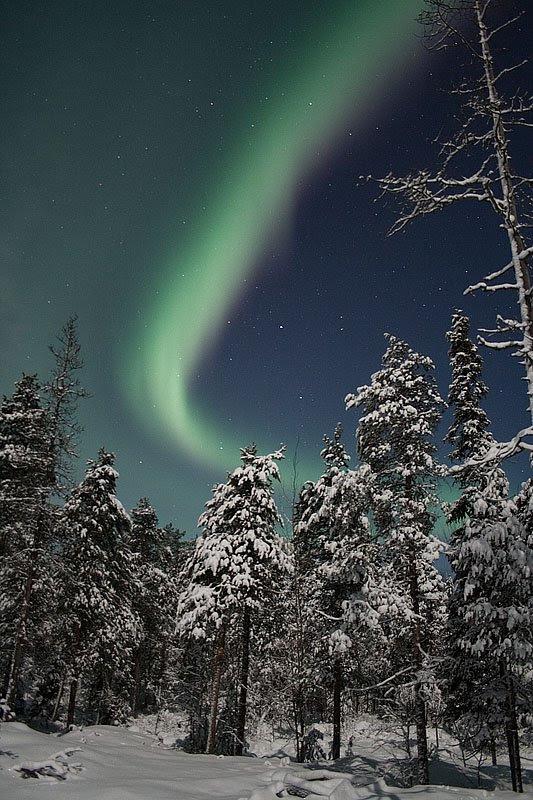 http://www.spaceweather.com/aurora/images2006/08dec06/Sarkela1.jpg