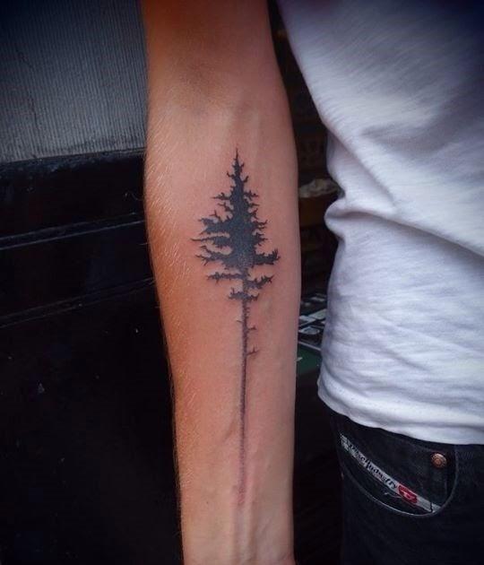 Am bauch tattoo narbe Ruffys Veränderung