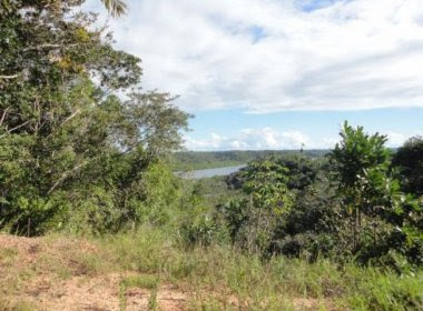 Aeronave cai em área de fazenda em Jaguaripe