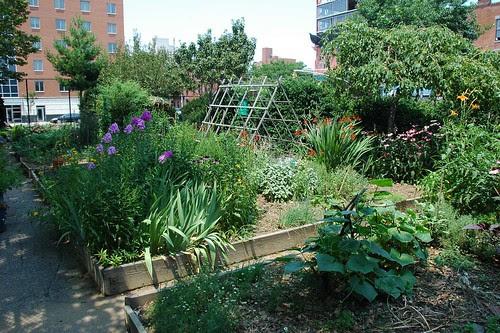 Baltic Street Community Garden