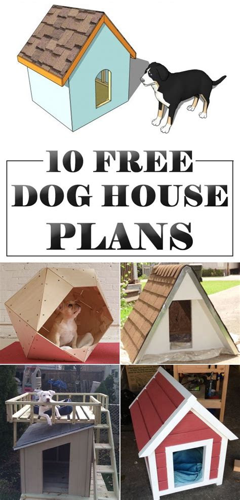 amazing diy dog houses   plans