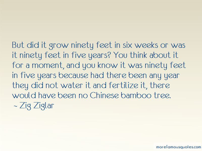 Water The Bamboo Quotes Top 4 Quotes About Water The Bamboo From