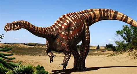 aardonyx dinosaur wiki fandom powered  wikia