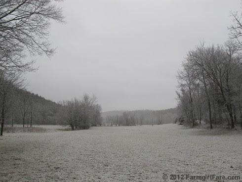Snowy farm morning 6 - FarmgirlFare.com