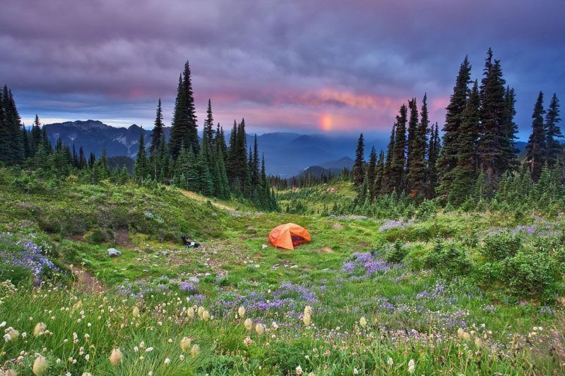 Camping at Mount Rainier
