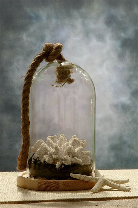 9 Nautical Glass Bell Jar with Wood Base & Rope