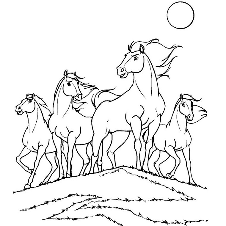 Photo De Chevaux A Colorier Az Coloriage