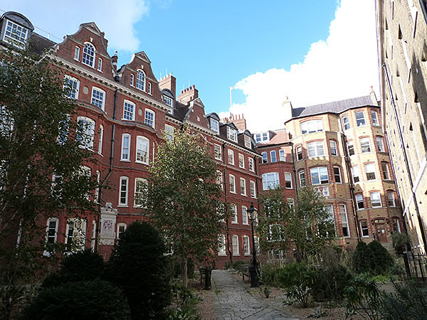 hare court 3