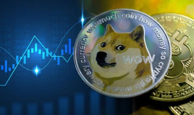 Dogecoin spikes 300% in ONE week – why is cryptocurrency Dogecoin rallying?