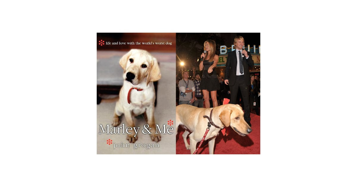 Marley And Me Book Main Characters