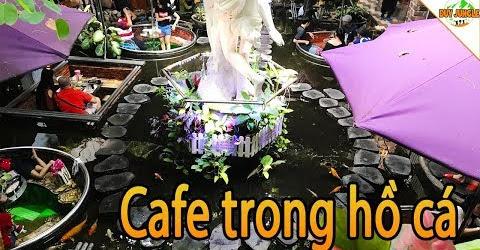 Độc Đáo Quán Cafe Trong Hồ Cá Koi Ở Sài Gòn | Duy Jungle